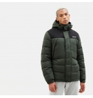 Veste Homme Timberland Outdoor Archive Camo Puffer Jacket