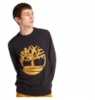 Sweat Homme Timberland Core Logo Tree Crew Loopback - Coupe droite