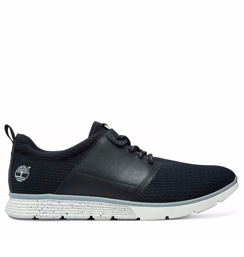 Chaussures Timberland Amherst grises homme