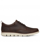 Chaussures Homme Timberland Bradstreet 5-Eye Oxford - Marron foncé