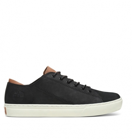 Chaussures Homme Timberland Adv 2.0 Cupsole Modern Oxford - Noir nubuck
